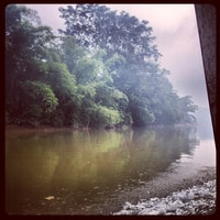 on a boat (for three hours) to our next stay in the jungle.