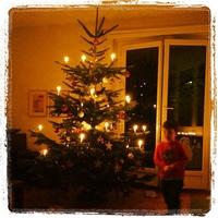 xmas tree Action.
