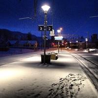 snowy entlebuch
