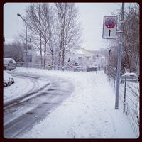 Snowy Zurich. no bus on the hill.