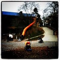 on the freezing  playground