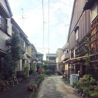 Nara town
