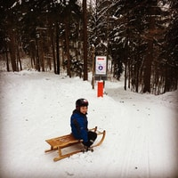 sledding in Zurich city #uetliberg