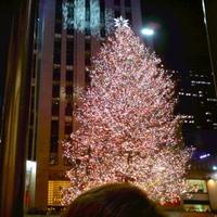 Christmas at new york