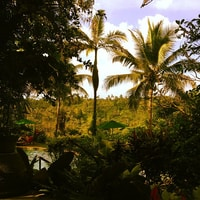 the view from our balcony here in Bali.