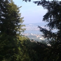 view over lake of zürich